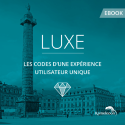 Couverture-Ebook-Luxe